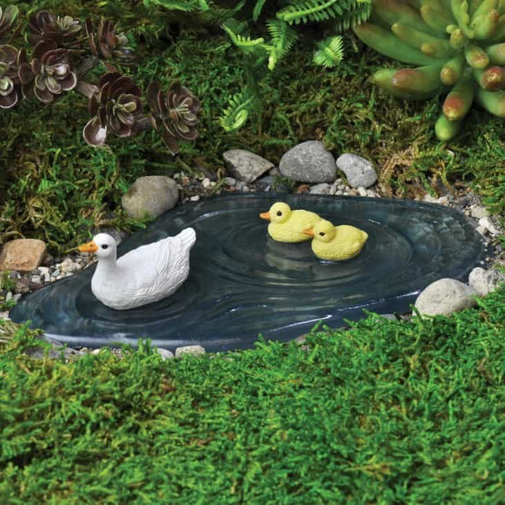 Duck pond fairy gardening australia for Backyard pond animals