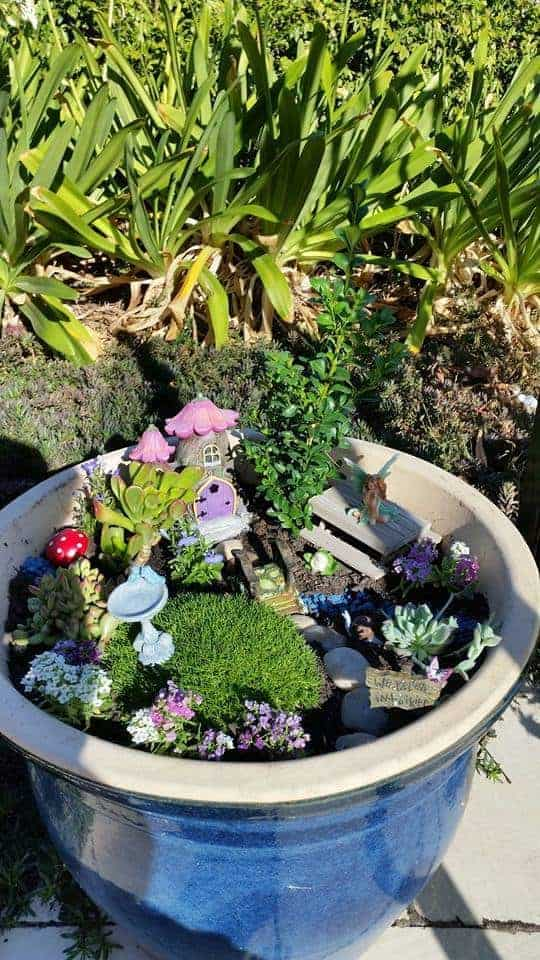 Fairy Gardening Australia