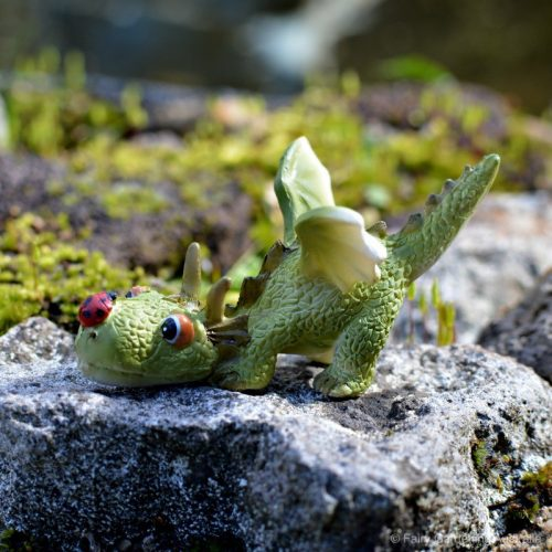 Baby Dragon with Ladybug