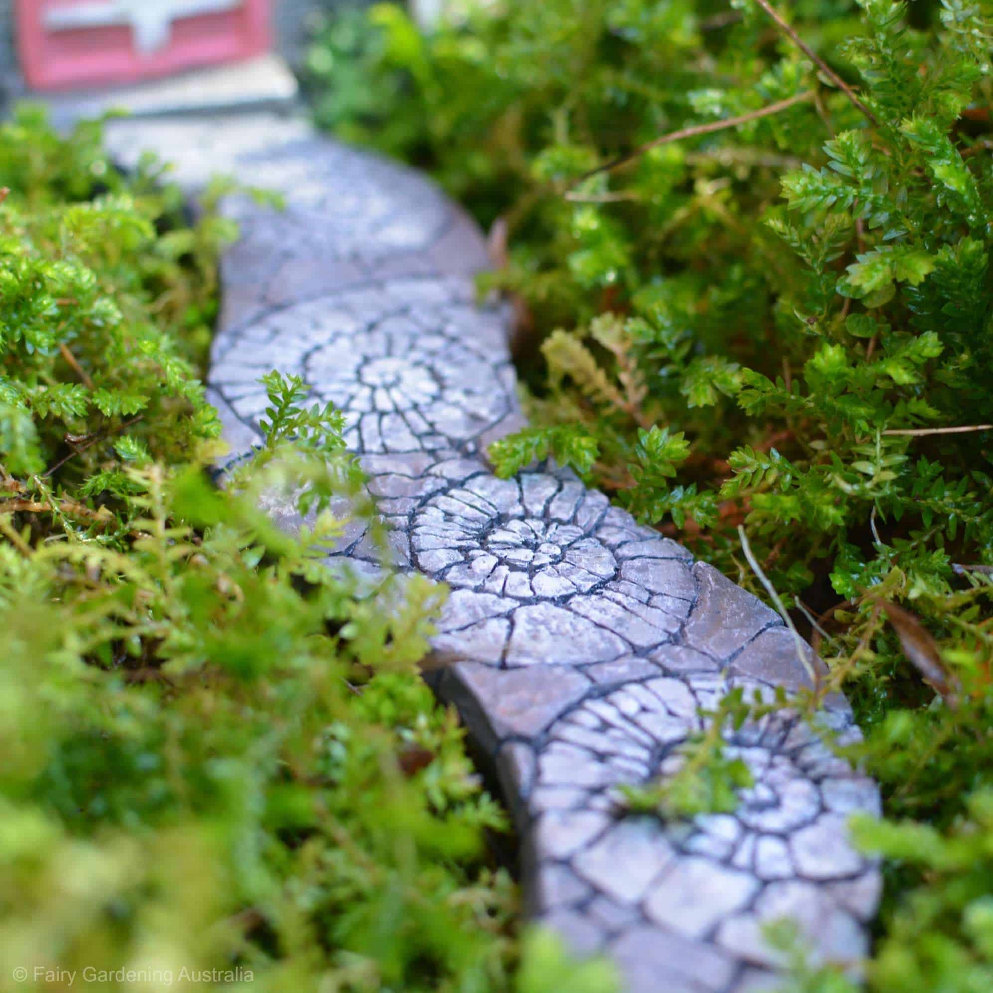 Fairy garden path nautilus for Gardening australia