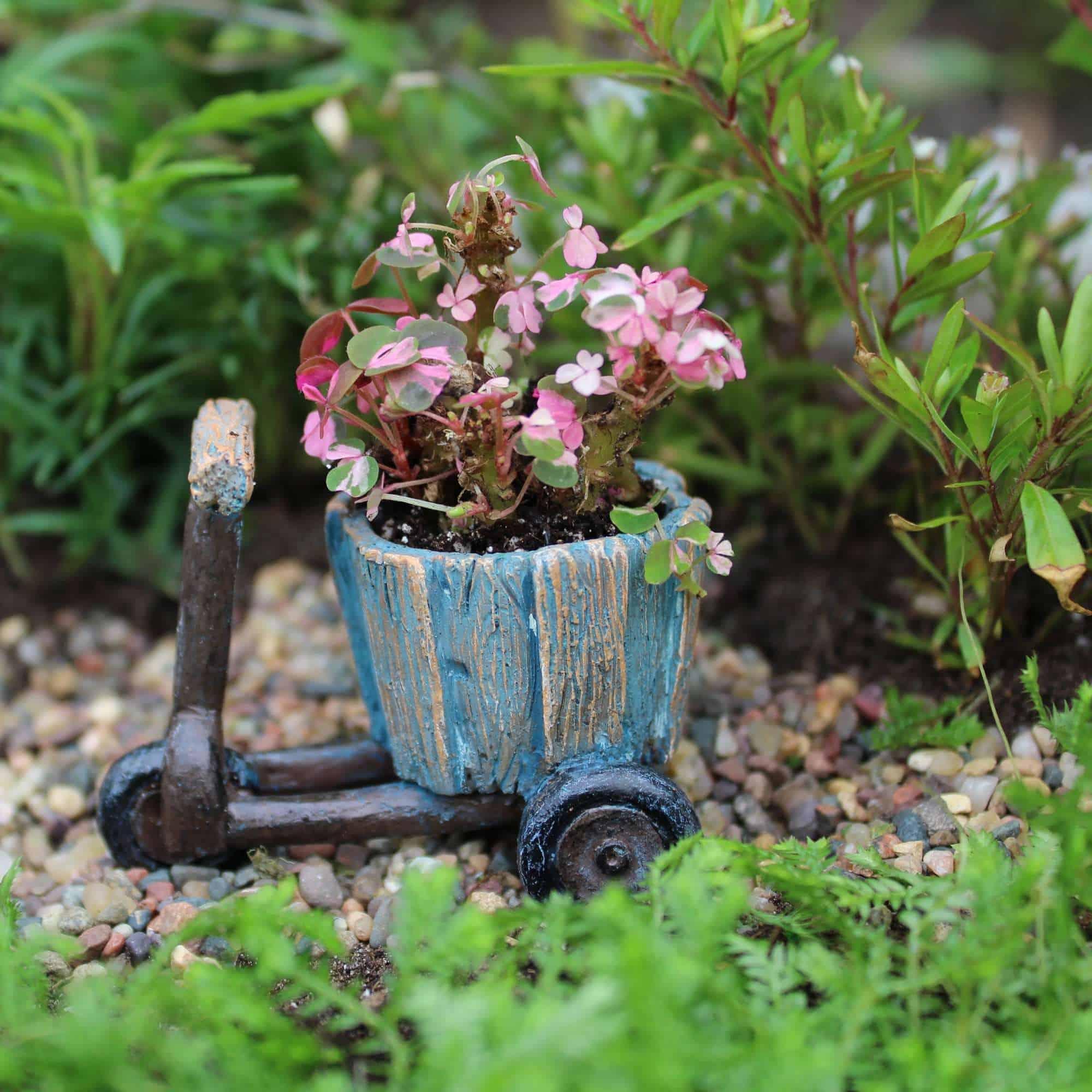 Wheeled Planter Fairy Gardening Australia
