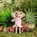 Tiger Lily Fairy – Anastasia