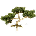 Artificial Bonsai Conifer B