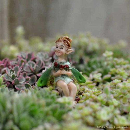 Fairy Cranberry