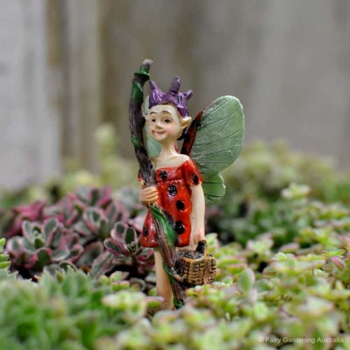 Fairy Ladybug