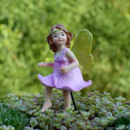 Fairy Nixie