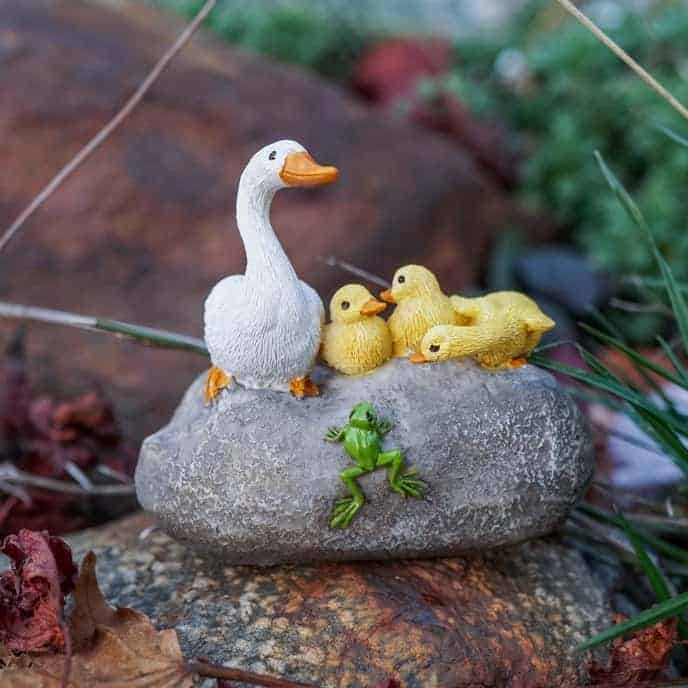 mother duck and ducklings on a stone