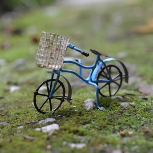 Bicycle with Basket – Blue