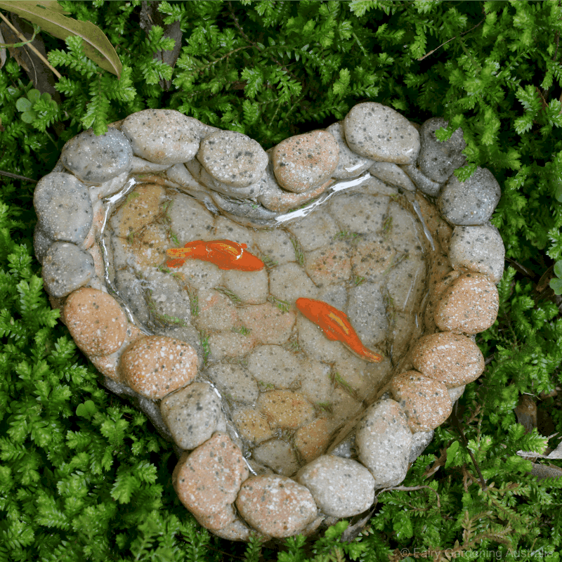 Heart Shaped fish pond