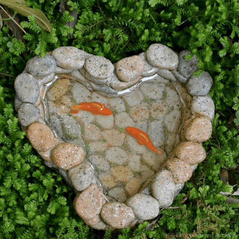 Charmant Fairy Garden | Fairy Gardens Australia | Fairy Garden Ideas