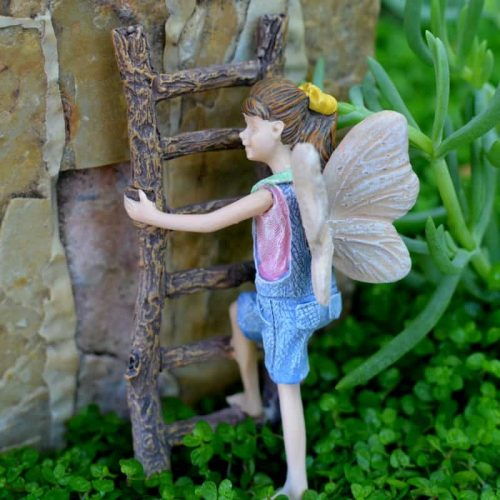 Fairy Gracie on Ladder