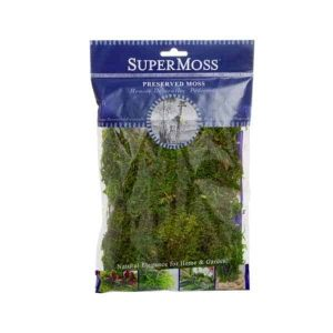 Forest Moss – Fresh Green