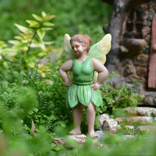 Fairy Mary