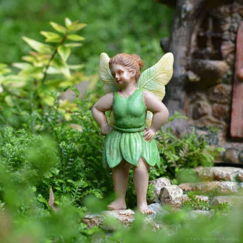 fairy mary_fga