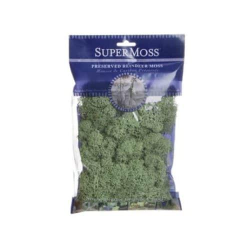 Reindeer Moss – Light Green