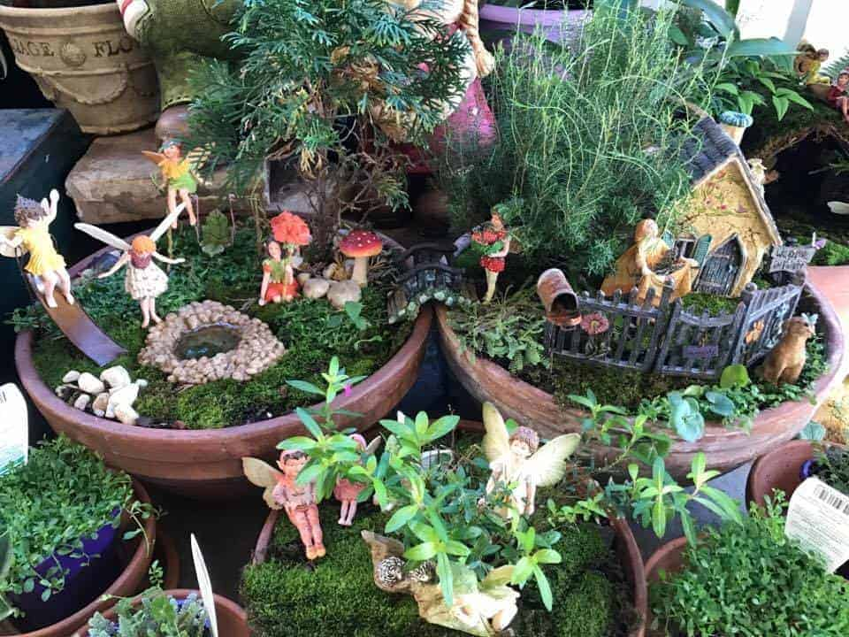Fairy garden learning centre, fairy garden by Debbie, image supplied by D. Bayliss