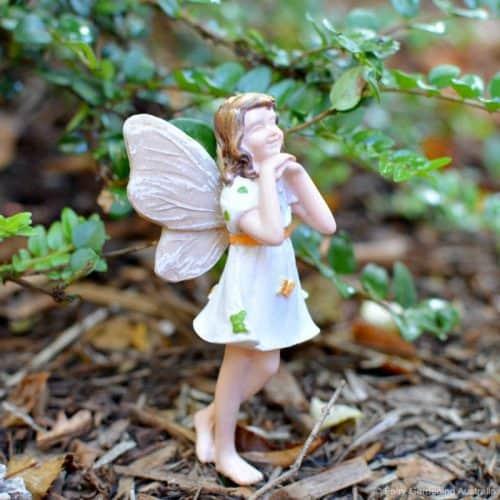 Fairy Rosie