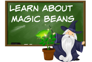 Learn About Magic Beans