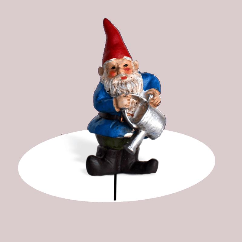 Brolan Gnome