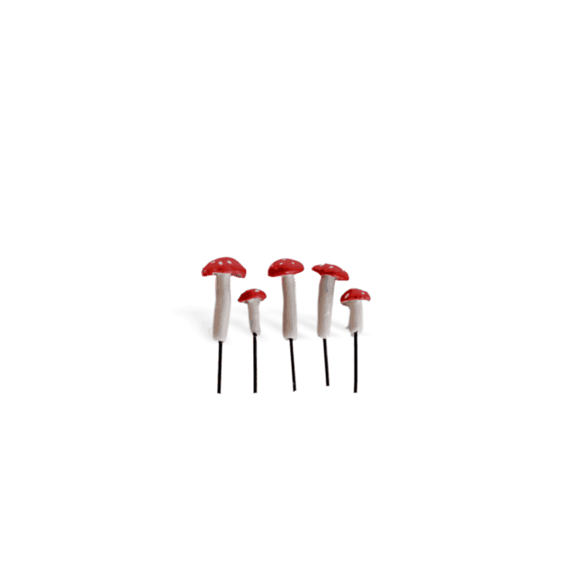 Micro Mushrooms Red