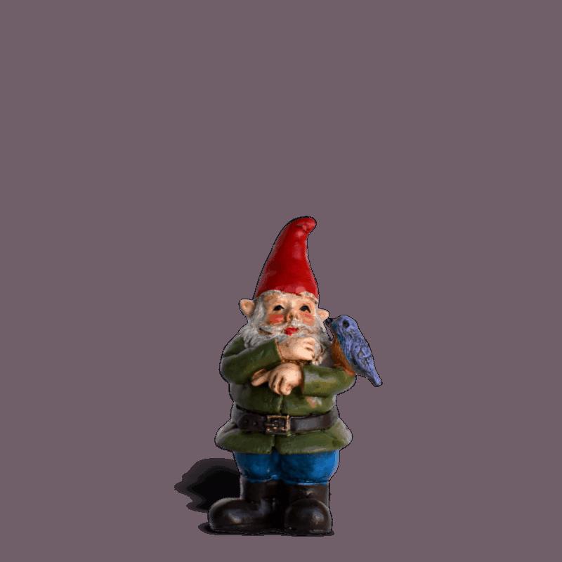 Sherman Gnome_17594