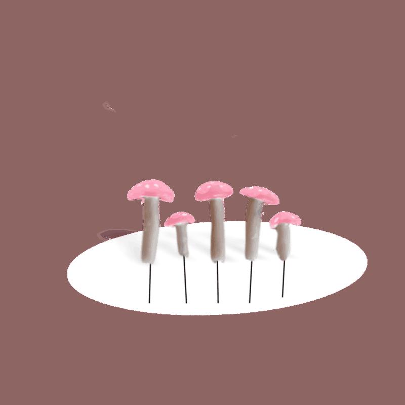 Pink Mushroom Set