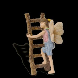 Fairy Gracie on Ladder