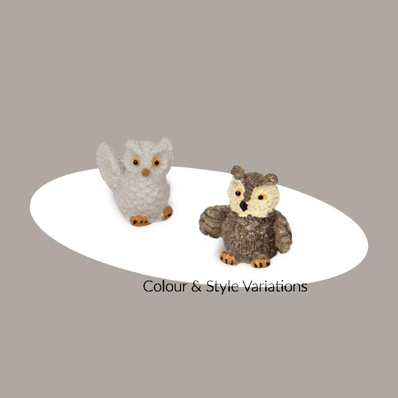 Little Owl Assorted (1)