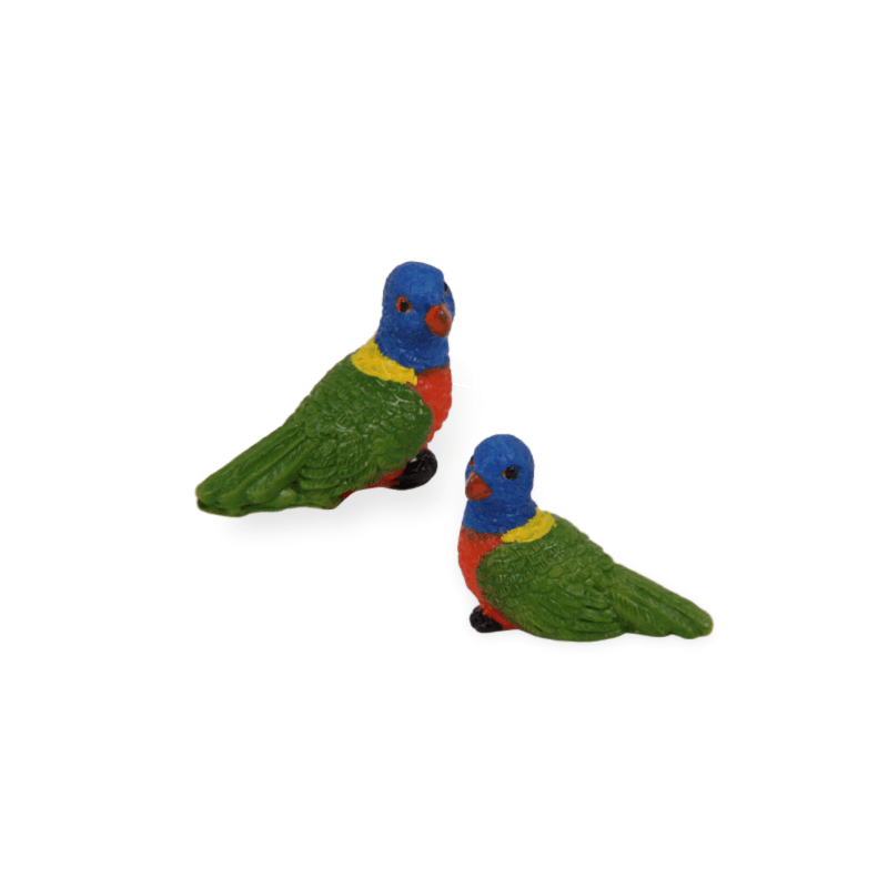 Mini Rainbow Lorikeets