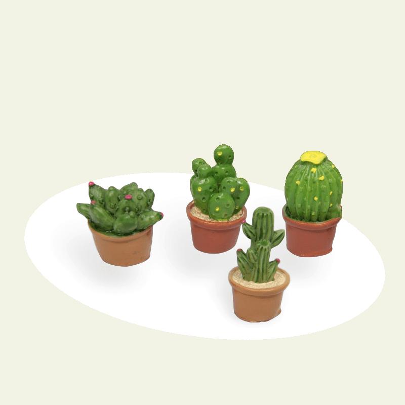 cactus set 4