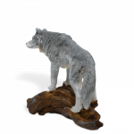 Wolf on a log_side