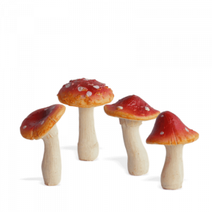 Toadstool Set – Red