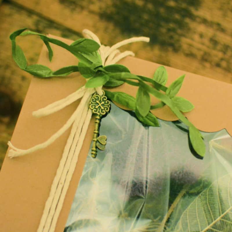 moss kit packaging