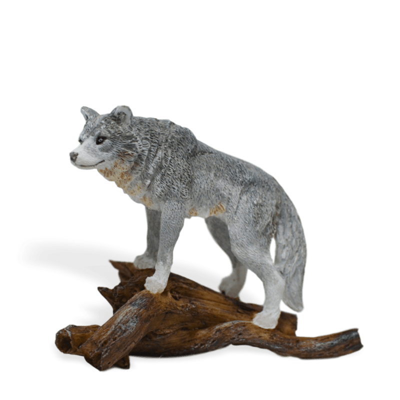Wolf on a Log