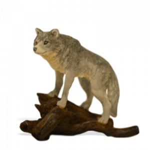 Wolf with Log