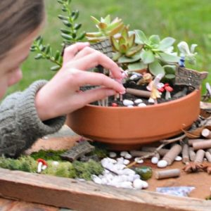 How to create a fairy garden