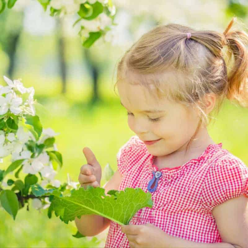 fairy gardening kids