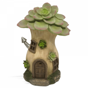 Echeverias Solar Fairy House
