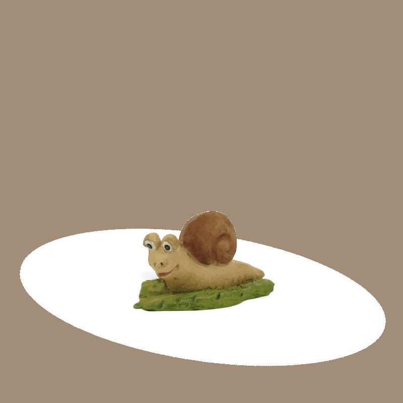 snail_1