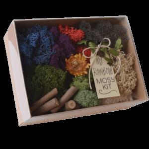 My Rainbow Fairy Garden Moss Kit