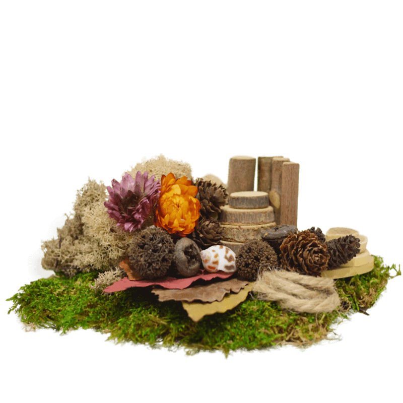 Natural Treasures Kit