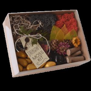 The Dragons Fairy Garden Moss Kit
