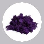Violet Reindeer Moss