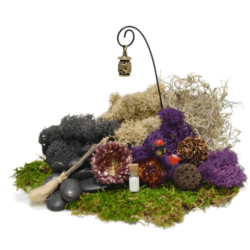 The Witch's Moss Kit