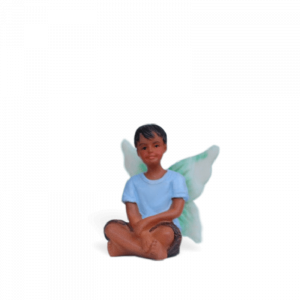 Fairy Liam