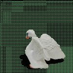 Swan_back