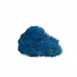 Aqua Blue Reindeer Moss