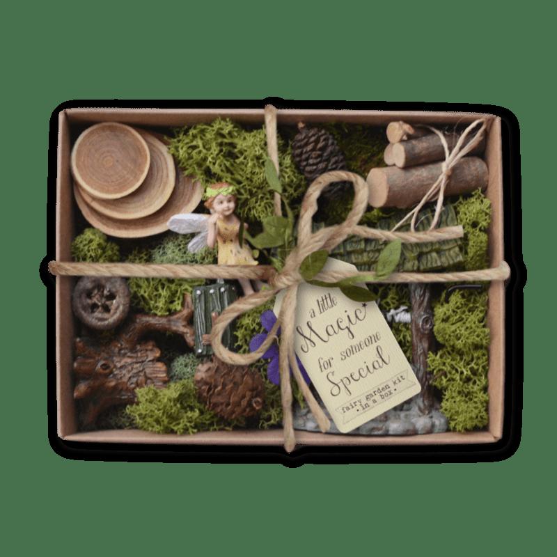 Fairy Forest Fairy Garden Box kit