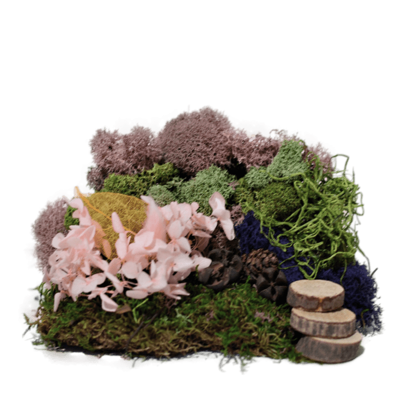 Twilight Moss Kit