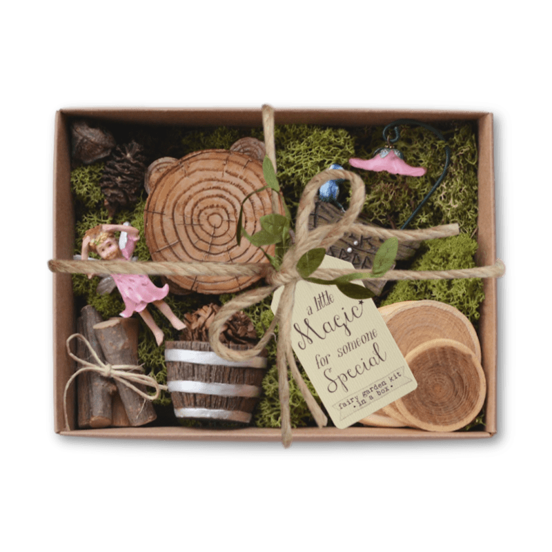 Woodland Charms Fairy Garden Kit In A Box
